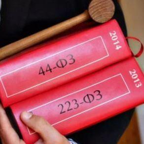 Юридические услуги для бизнеса при закупках по 223 и 44 ФЗ