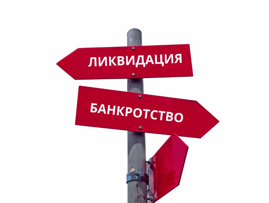 Ликвидация ООО и банкротство — в чем разница?