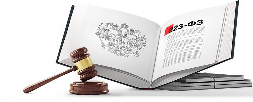 Юридические услуги по закупкам 223-ФЗ